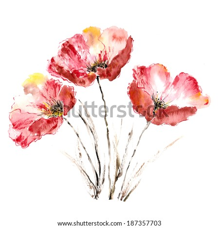 Poppies Flower bouquet Watercolor picture