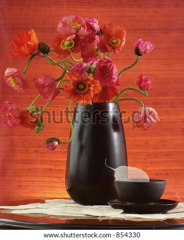 Poppies in bloom-Still life