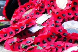 Poppies left at a memorial during a Rememberance Day Service