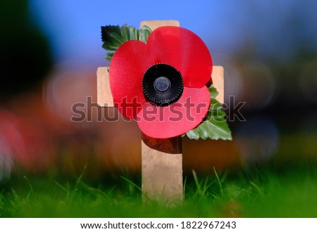 Photo of  Poppy appeal symbol. Remembrance poppy. Red puppy flower placed on the small wooden cross in the green grass. Shallow depth of field.