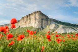 Poppy field against the background of rocky mountains, Belaya Skala, Belogorsk, Crimea