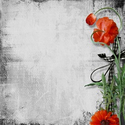 Poppy flowers on a grunge paper  background