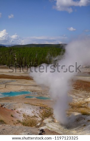 porcelain basin, yellowstone nationalpark, wyoming, usa #1197123325