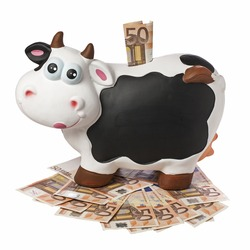 Porcelain cow piggybank with 50 euro inserted on 50 euro banknotes floor isolated and  blank blackboard copyspace