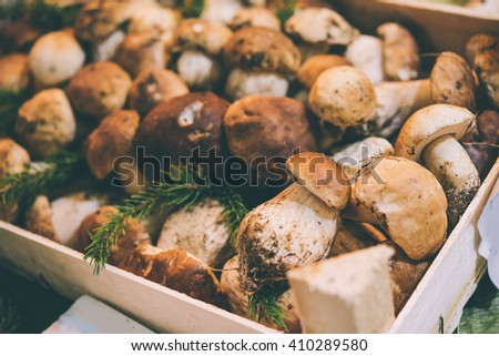 Porcini mushrooms on sale at one of the markets in Genova, Italy. Toned picture. Selective focus