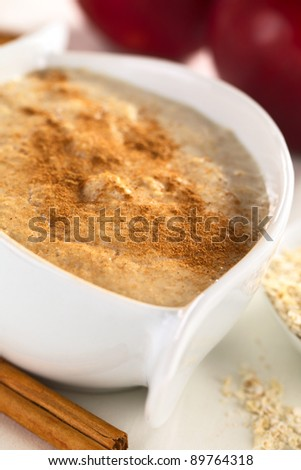 Porridge made of oatmeal and milk served with ground cinnamon (Selective Focus, Focus one third into the porridge)