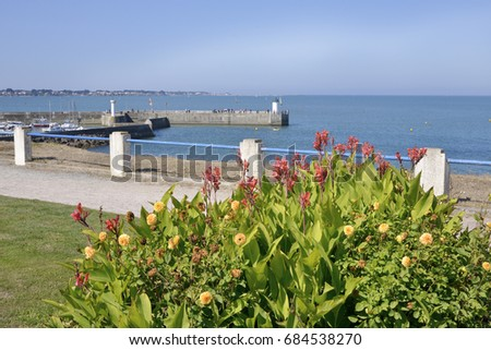 Port of Saint-Michel-Chef-Chef with the red canna flowers, in the Loire-Atlantique department in western France. #684538270