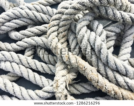 Port rope. Mooring rope. Rope for fastening ships and cargo. #1286216296
