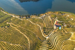 Port wine wine farm in Douro