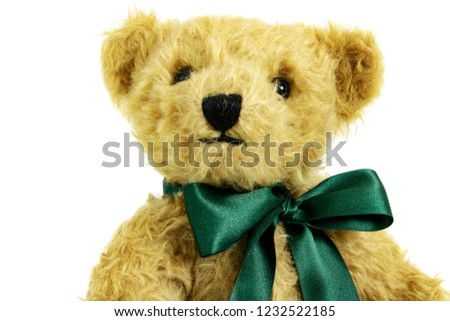 Portait of fluffy teddy bear, toy is made from golden mohair complemented with pure wool