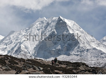 Porters near Island peak (6189 m) in district Mt. Everest - Nepal, Himalayas