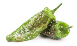 Portion of Pimientos de Padron as detailed close-up shot isolated on white background