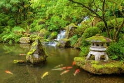 Portland Japanese Garden pond with koi fish carp