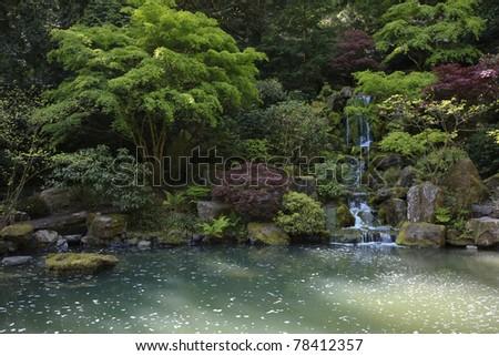 Portland Oregon Japanese Gardens