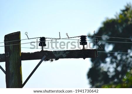 Porto Alegre, Brazil - March 19, 2020: Artistic photo of a lamppost with moss in the city Porto Alegre Foto stock ©