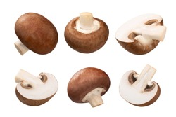 Portobello mushrooms (Agaricus bisporus fruit bodies), whole and halved, isolated