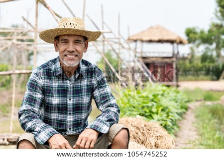 Portrait happy mature man is smiling. Senior farmer with white beard feeling confident. Elderly asian man sitting in a shirt and looking at camera at field in sunny day.