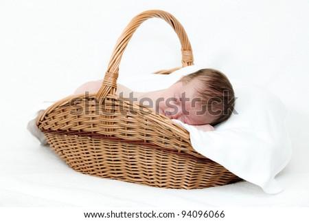 Portrait newborn baby sleeping in basket