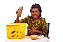 portrait of a beautiful adult housewife taking fresh yam from the market basket while smiling.