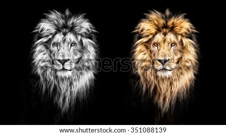 Stock Photo Portrait of a Beautiful lion, in the dark, oil paints, soft lines