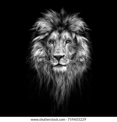 Stock Photo Portrait of a Beautiful lion, lion in the dark, oil paints