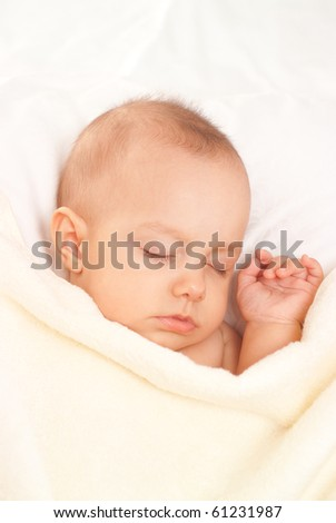portrait of a beautiful newborn  on a white background