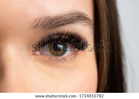 Portrait of a beautiful woman with eyelashes and eyebrow correction. Eye close up. Stockfoto ©