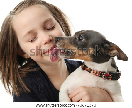 Portrait of a beautiful young girl snuggling with and being licked by a cute terrier puppy dog,  isolated on white in studio