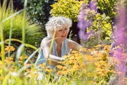 Portrait of a blond senior woman with an active lifestyle enjoying retirement during work in the garden in a sunny day of summer