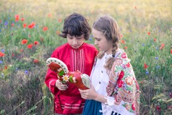 Portrait of a boy and a girl in the field. On the girl is a shawl with folk patterns. Boy in Russian peasant shirt. They are considering a wooden horse painted in the style of lubok.