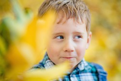 Portrait of a boy in the open air against a background of yellow leaves. Cute boy walking in the autumn Park.The child is holding yellow leaves in front of him, they are in disfocus.