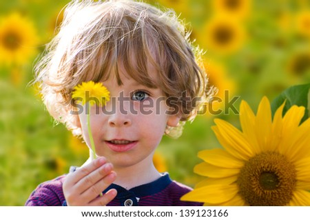 Portrait of a cute kid with blue eyes and fair curled hair on a sunflower field holding a single dandelion flower in the hand on a sunny summer day