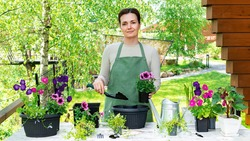 Portrait of a cute woman gardener who transplants flowers into flower pots to decorate the garden and home. A woman uses a spatula to plant flower seedlings in a pot. Gardener's workplace.
