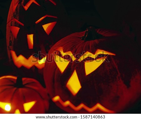 Portrait of a group of jack-o-lanterns