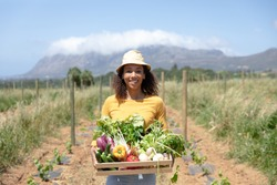 Portrait of a happy African American woman carrying a box of fresh organic vegetables. Social distancing and self isolation in quarantine lockdown for Coronavirus Covid19