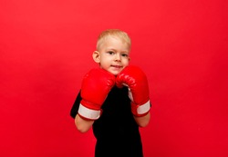 portrait of a little boy boxer in boxing gloves on a red background with space for text
