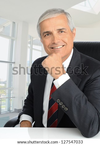 Portrait of a mature businessman sitting at his desk with his hand on his chin. Man is smiling at the camera. Vertical format.