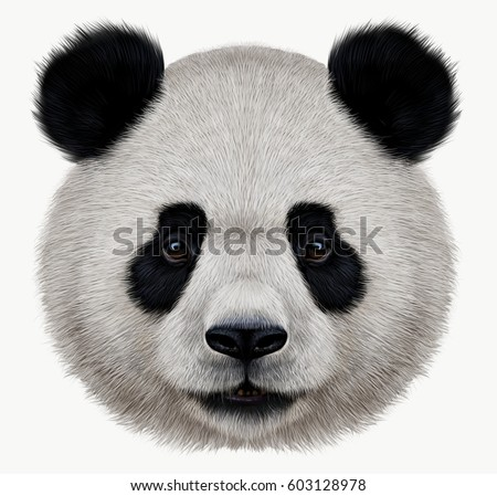 Portrait of a Panda bear wild animal realistic style