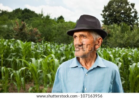 Portrait of a senior farmer with a corn field in the background, selective focus