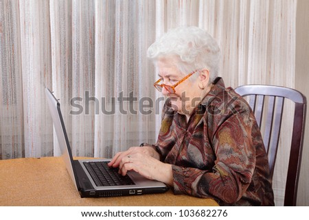 Portrait of a senior woman working at computer