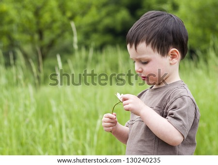 Portrait of a toddler child standing on a green summer meadow holding a daisy.