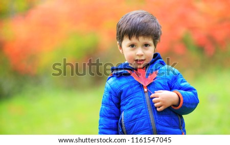 Portrait of a toddler cute boy with a red maple leaf in the hand. Happy child playing with maple leaves in beautiful autumn park on warm sunny fall day. Canadian kid having fun during holiday time.