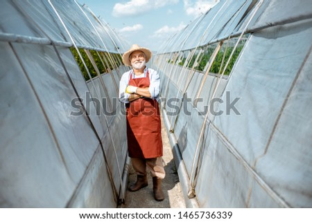 Portrait of a well-dressed senior man standing between hothouses outdoors as a business owner of agricultural farm. Concept of a small agribusiness and work at retirement age #1465736339