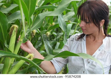 portrait of a woman in corn field
