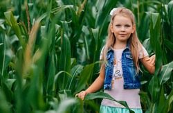 Portrait of a young blonde girl among tall corn plants on a rural field in the gloomy light of the sunset. Girl between green leaves in a corn field