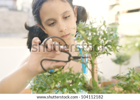 Portrait of a young girl concentrated in trimming a bonsai tree into shape.