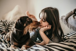 Portrait of a young little girl and her old dog best friend in modern bedroom on the bed in the grey white sheets, decorated with light strings