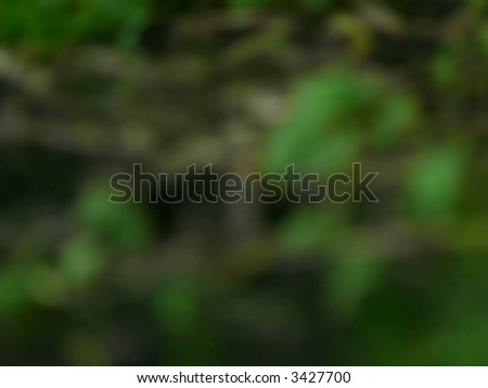 portrait of abstract camouflage nature background