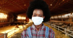 Portrait of African American young woman in medical mask and motley shirt standing in stable of sheep farm and looking at camera. Pandemic concept. Female farmer in cattle shed. Dolly shot.