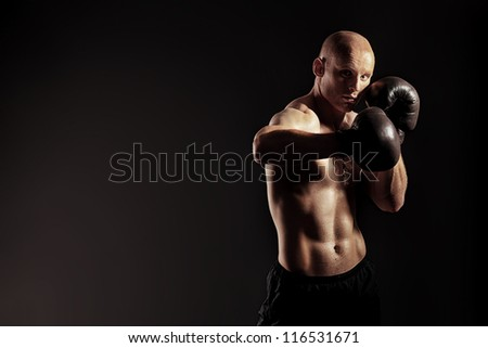 Portrait of an aggressive boxer in gloves posing at studio.